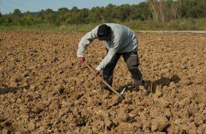 «Δουλοπάροικοι» στα χωράφια τους χιλιάδες αγρότες